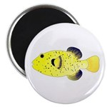 Guineafowl Puffer Yellow Magnets
