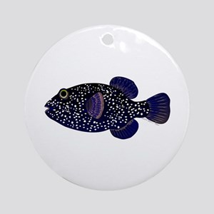 Guineafowl Puffer Black Ornament (Round)