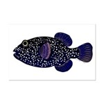Guineafowl Puffer Black Posters