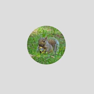 Grey Tree Squirrel Mini Button