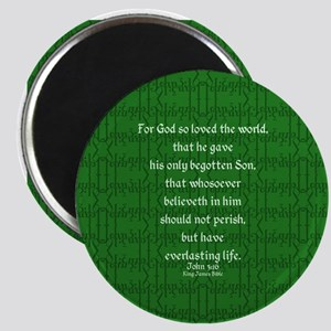 John 3 16 green Magnet
