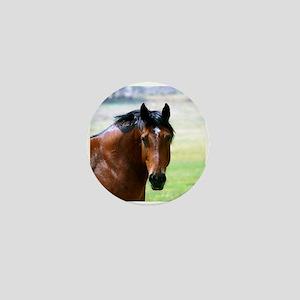 Horse Muscle Mini Button