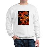 Fall Foliage - Sweatshirt