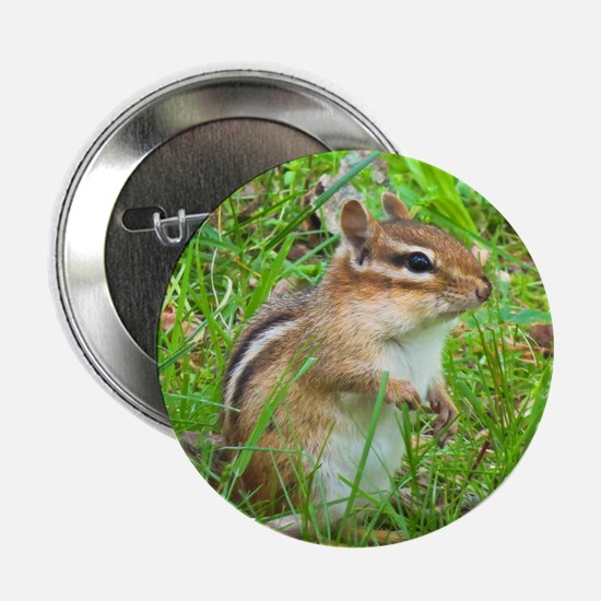 "Chipmunk 2.25"" Button"