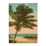 Vintage Florida Palm Tree 5'x7'area Rug