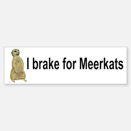 Meerkat Bumper Bumper Bumper Sticker