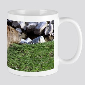 Capybara with Rocks Mug