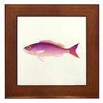 Crimson Jobfish Opakapaka Framed Tile