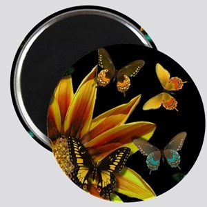 Butterfly Gardens Magnets