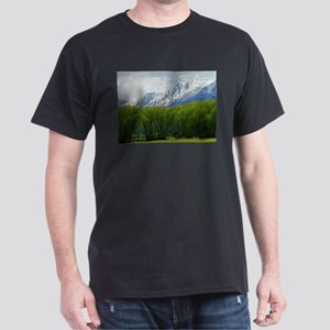 Spring snow capped mountains Dark T-Shirt
