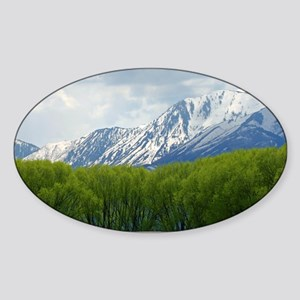 Spring snow capped mountains Sticker (Oval)