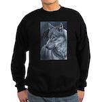The Messenger II Sweatshirt
