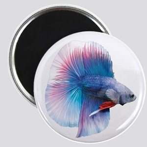 Double Tail Betta Magnets