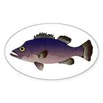 Atlantic Wreckfish Sticker