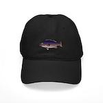 Atlantic Wreckfish c Baseball Hat