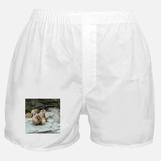 snow monkeys Boxer Shorts