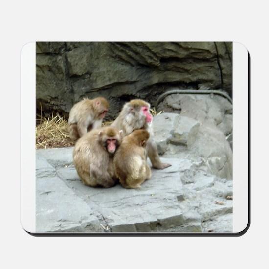 snow monkeys Mousepad
