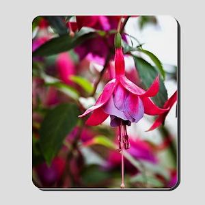 Pink Fuchsia Flower Mousepad