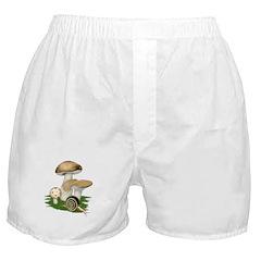 Snail in Mushroom Garden Boxer Shorts