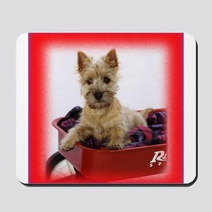 Baby Cairn Terrier Mousepad