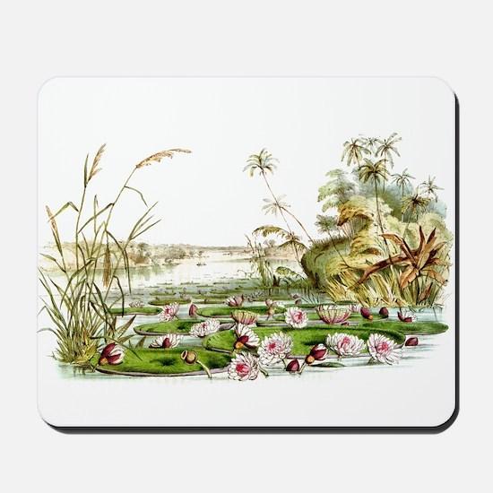 Waterlilies & Lilypads Mousepad