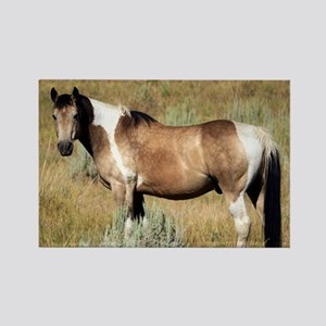 Horse photography 2c. Rectangle Magnet