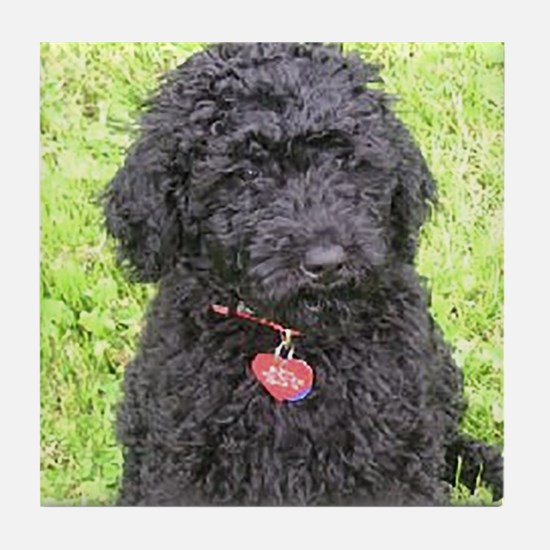 Funny Labradoodle Tile Coaster