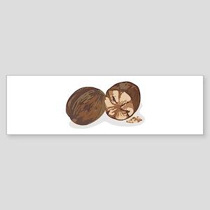 Nutmeg Bumper Sticker