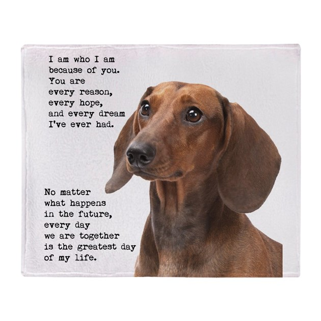 Dachshund Throw Blanket By Shopdoggifts