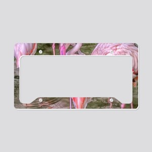 Pink Flamingos License Plate Holder
