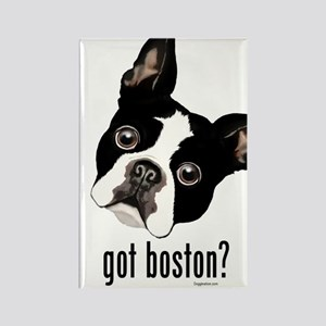Got Boston? Rectangle Magnet