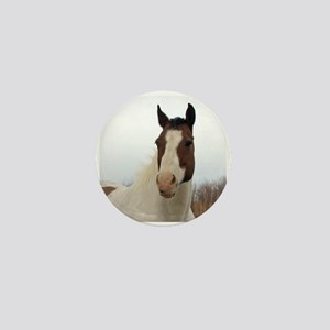 Paint horse,2 Mini Button