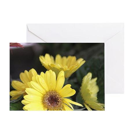 Yellow Chrysanthemum Flowers Greeting Card