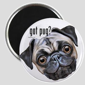 Got Pug? Magnet