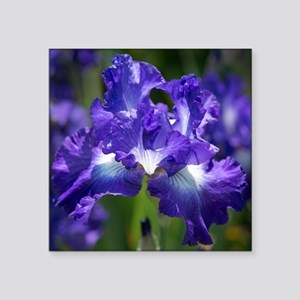 "iris garden Square Sticker 3"" x 3"""
