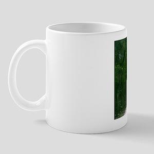 Serenity Any Time Of Day Mug Mugs