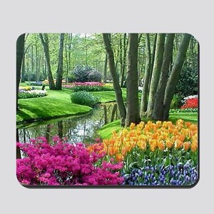 beautiful garden 2 Mousepad