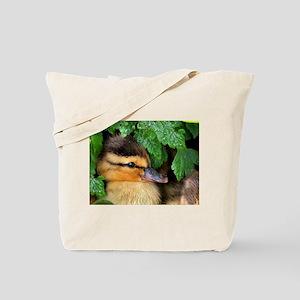 Mallard Duckling Tote Bag