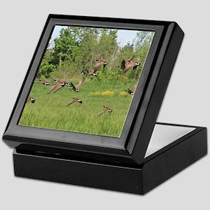 Geese in Flight Keepsake Box