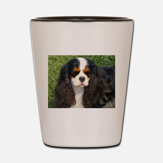 Cavalier King Charles Spaniel Shot Glass
