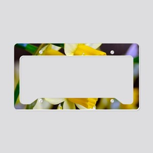 Yellow Daffodils License Plate Holder