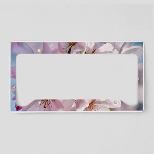 Japanese Cherry Blossoms License Plate Holder