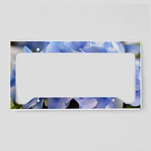 Blue Hortensia License Plate Holder