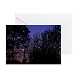 Moon Rise (pk Of 20) Greeting Cards