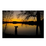 Gold Sunset Over A Lake Postcards (package Of 8)