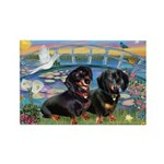 Sunrise Lilies / Doxie's Rule Rectangle Magnet