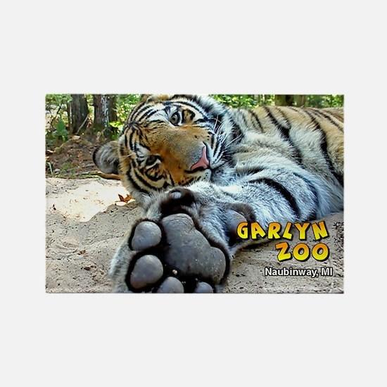tiger 2x3_magnet 2 Magnets