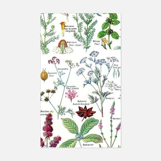 Larousse Plantes digestives, s Sticker (Rectangle)