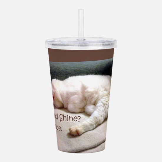 Rise And Shine? Nope. Acrylic Double-Wall Tumbler