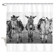 Donkeys Shower Curtain